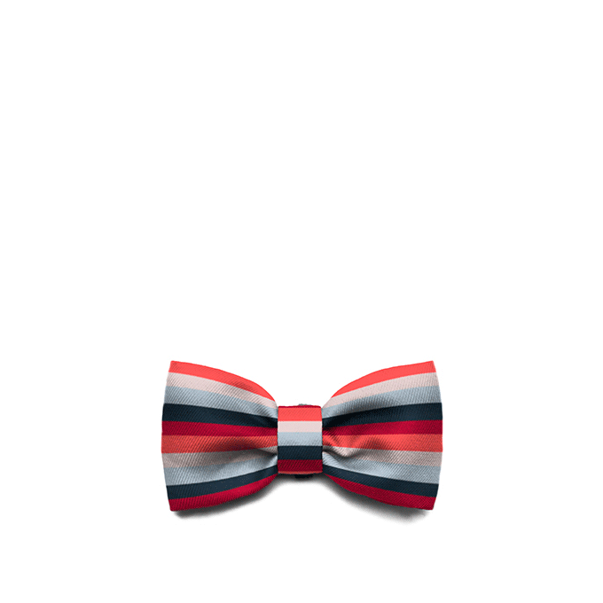 Zee.Dog Oregon Bow Tie - Apparel, Dogs, Zee.Dog - Shop Vanillapup - Online Pet Shop