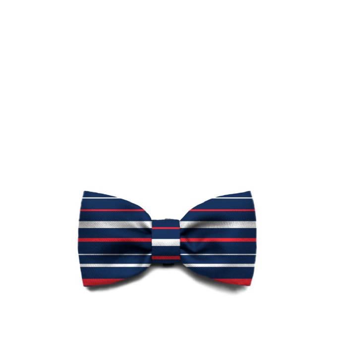 Zee.Dog Rocket Bow Tie