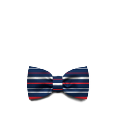 Zee.Dog Rocket Bow Tie - Apparel, Dogs, Zee.Dog - Shop Vanillapup