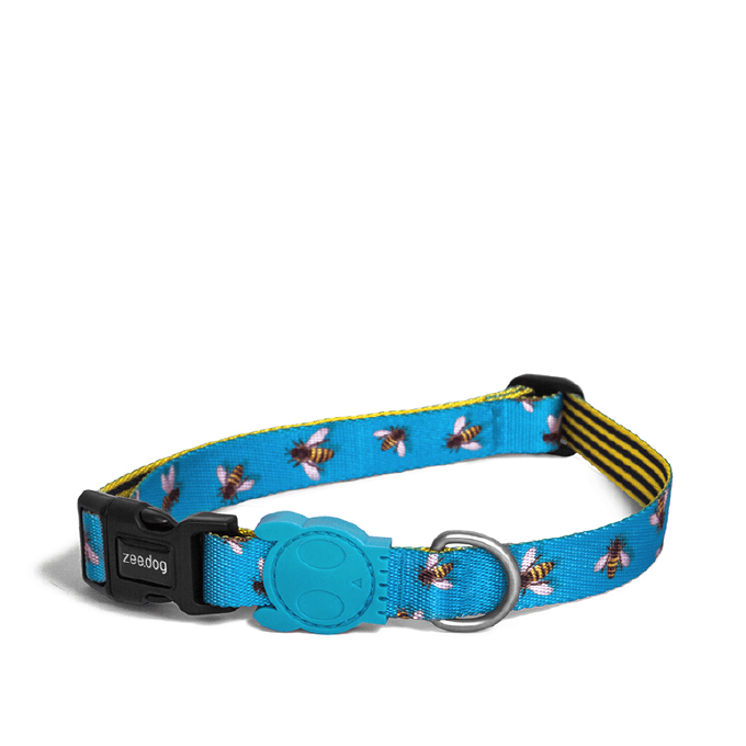 Zee.Dog Buzz Dog Collar - Vanillapup Online Pet Store