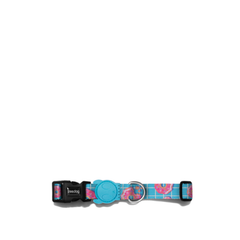 Zee.Dog Homer Dog Collar - Vanillapup Online Pet Store