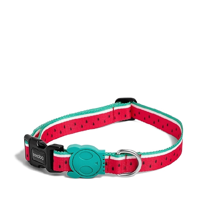 Zee.Dog Lola Dog Collar - 20, Collars, Dogs, New, Walking, Zee.Dog - Vanillapup - Online Pet Shop