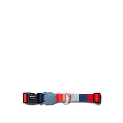 Zee.Dog Oregon Dog Collar - Shop Vanillapup Online Pet Shop