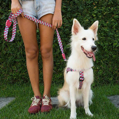 Zee.Dog Adria Dog Leash - Dogs, Leashes, Zee.Dog - Shop Vanillapup - Online Pet Shop