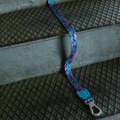 Zee.Dog Crosby Leash on Stairs