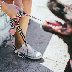 Zee.Dog Mahalo Dog Leash - Dogs, Leashes, Walking, Zee.Dog - Vanillapup - Online Pet Shop