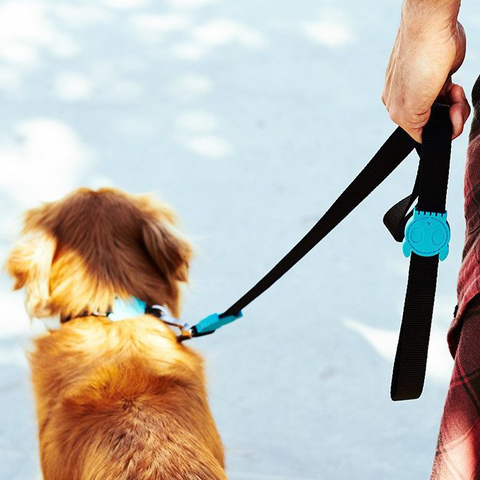 Zee.Dog Monoby Dog Leash - Dogs, Leashes, Zee.Dog - Shop Vanillapup - Online Pet Shop