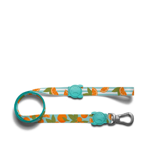Zee.Dog Florida Dog Leash - Dogs, Leashes, New, Zee.Dog - Shop Vanillapup