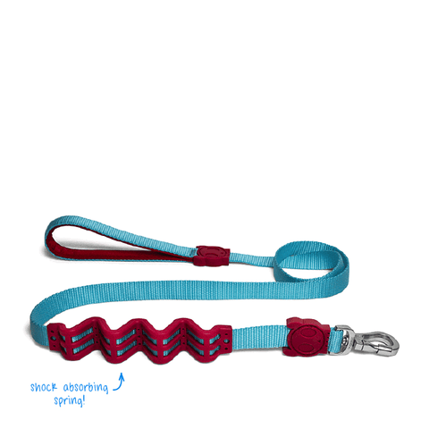 Zee.Dog Sierra Ruff Shock Absorbent Dog Leash - Dogs, Leashes, Zee.Dog - Shop Vanillapup - Online Pet Shop