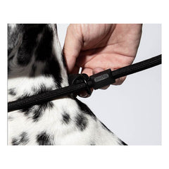 Zee.Dog Gotham Slip-on Leash - Vanillapup Online Pet Shop