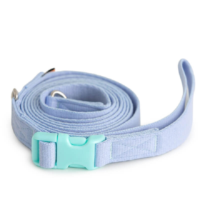 Bite Me Candy Crayon Leash | Light Blue