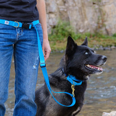 Dog + Bone Multi-way Adjustable Leash | Blue - Vanillapup Online Pet Shop