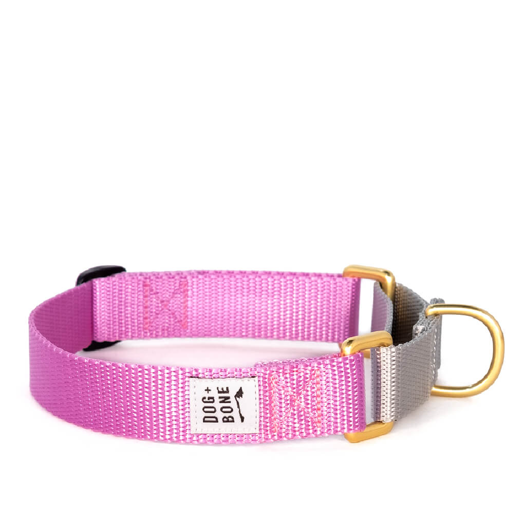 Dog + Bone Martingale Collar | Orchid & Silver