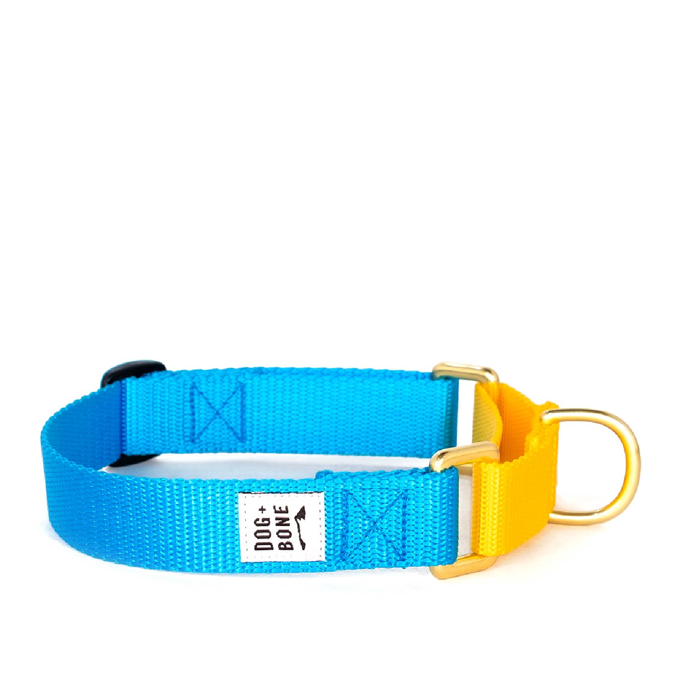 Dog + Bone Martingale Collar | Blue & Yellow - Vanillapup Online Pet Shop
