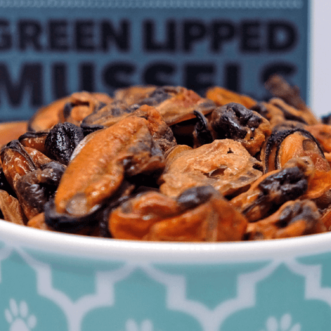 Loyalty Pet Treats Green-lipped Mussels Treats