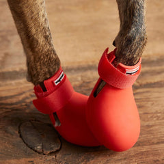 Wagwear WagWellies™ Dog Boots | Red - Apparel, Dogs, New, Wagwear - Vanillapup - Online Pet Shop
