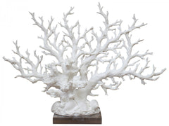 Pinnate White Coral Decor