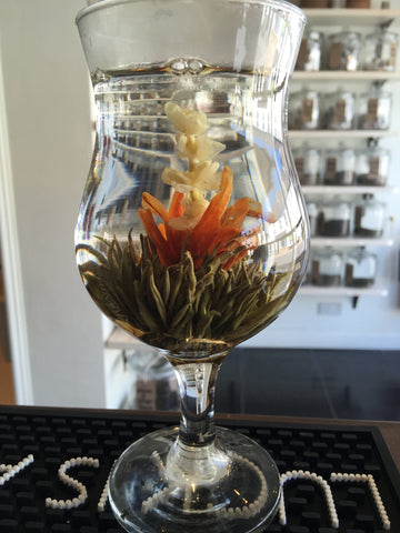 Flowering tea - Jasmine Godness