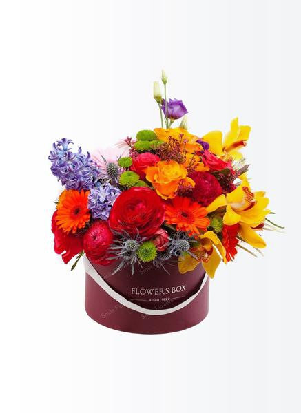 Bright color flower box of mixed flowers