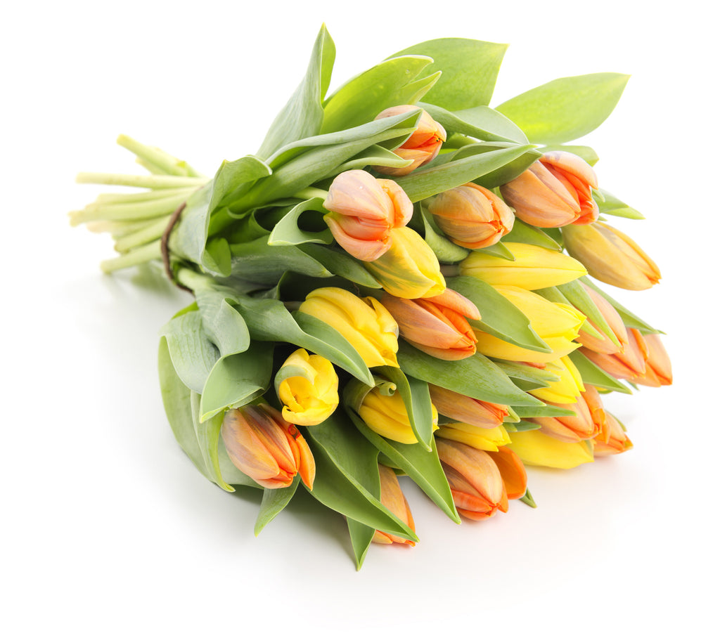 Yellow-Orange tulips bouquet