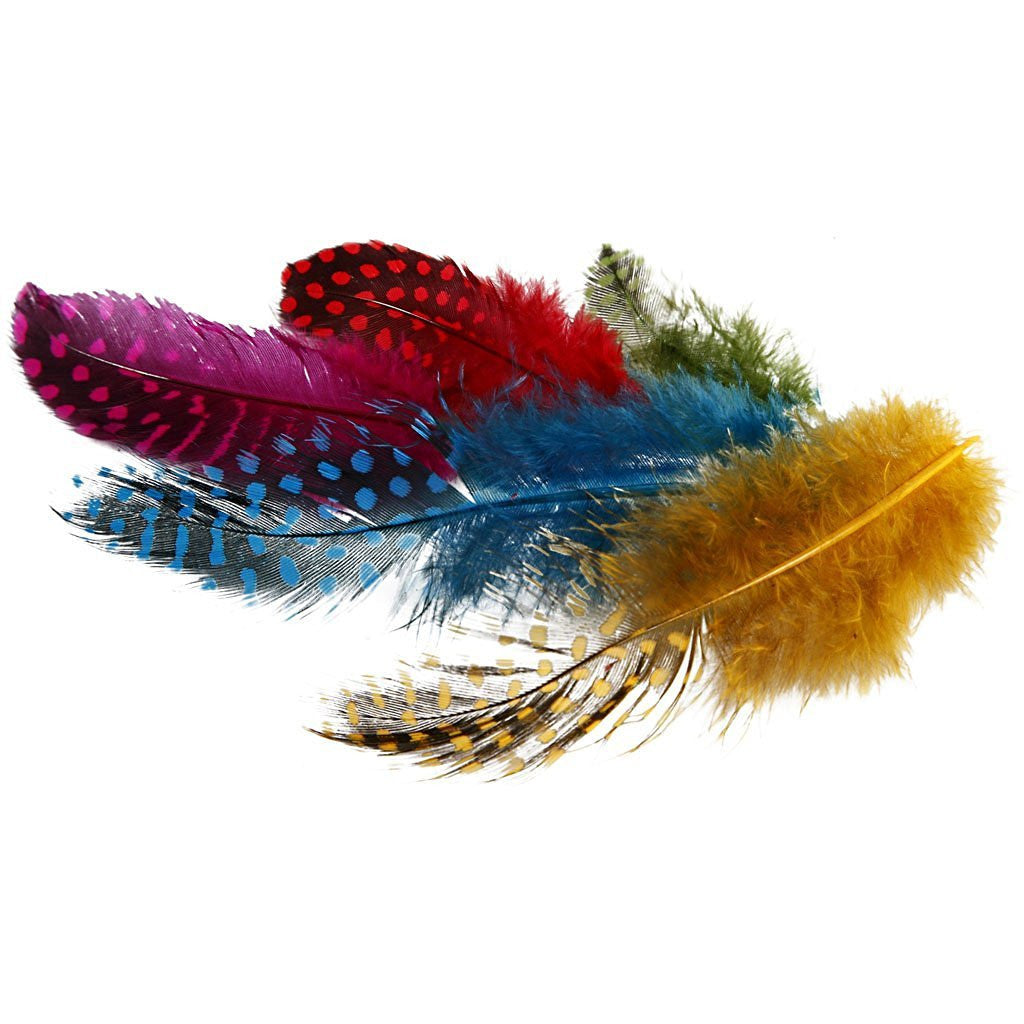 Multicoloured feathers