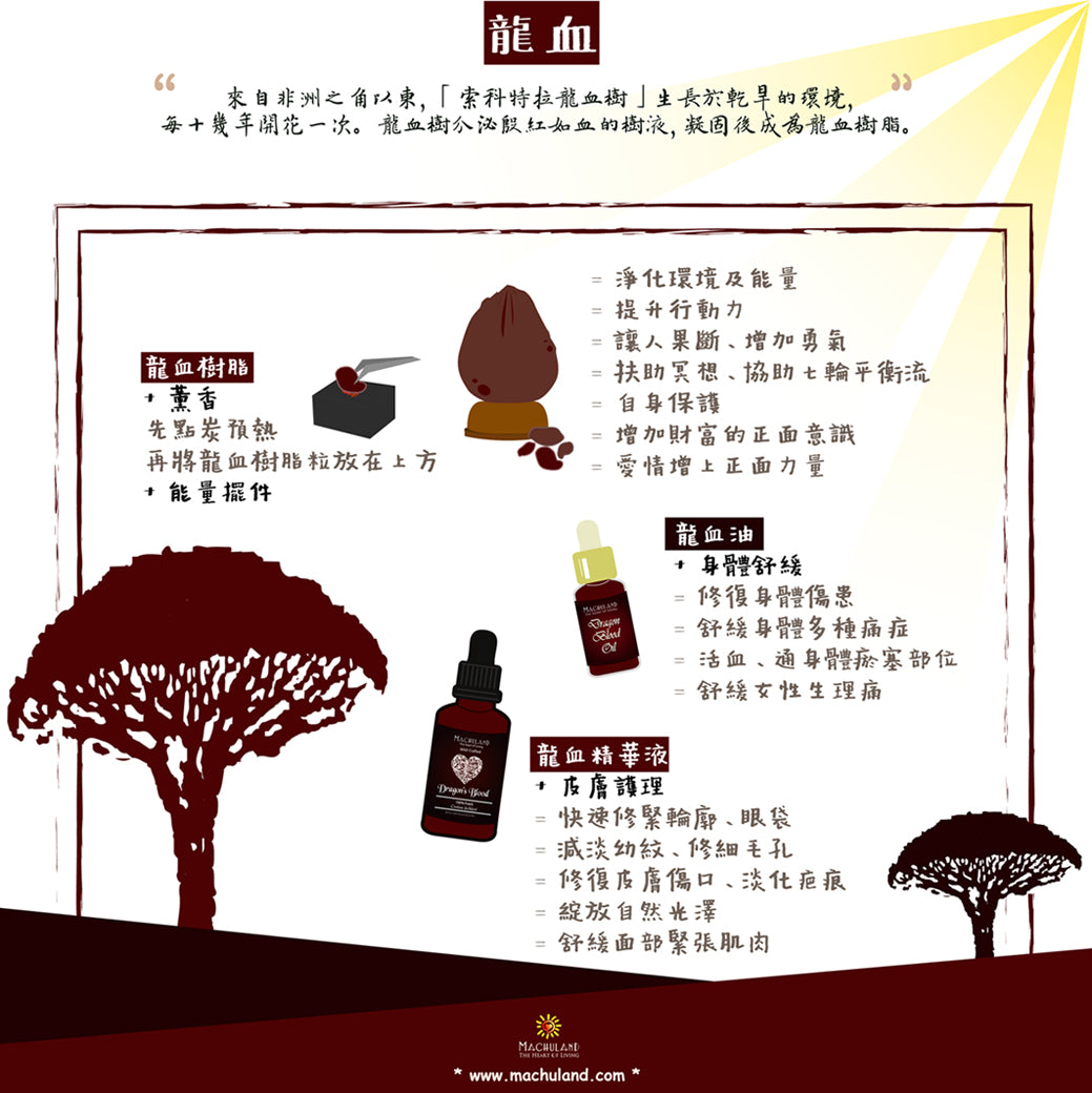 Machuland Dragons Blood Oil Essence HK