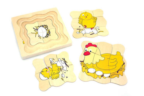Chicken Lifecycle Layered Puzzle