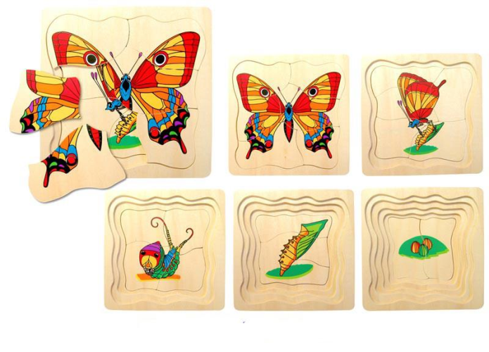Butterfly Life Cycle Layered Puzzle