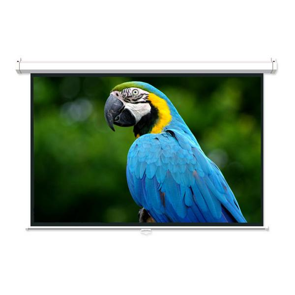 "120"" 16:9 Manual Projection Screen Soft PVC white - 13-0072 - Mounts For Less"