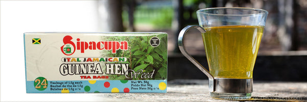 Health Benefits of Guinea Hen Weed Tea