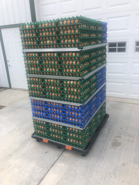 Egg Stacking Kit (60 cases)