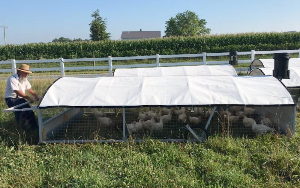 Portable Chicken Tractor - 8' x 16' (Now taking orders)