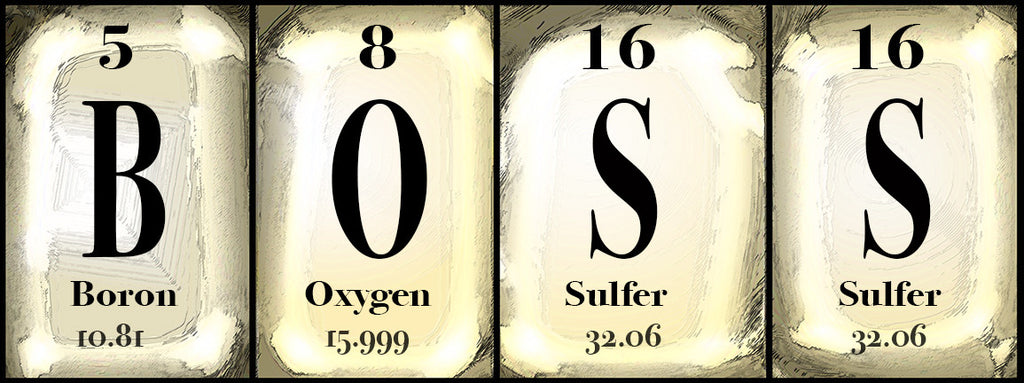 "'Boss' periodic Table sign        10"" x  20"""