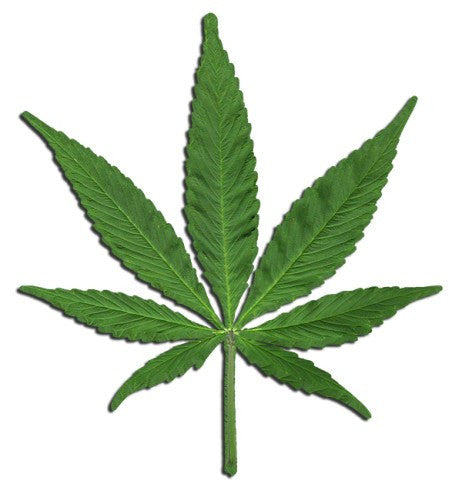 MARIJUANA CUTOUT LEAF SIGN 13″×11 1/2″