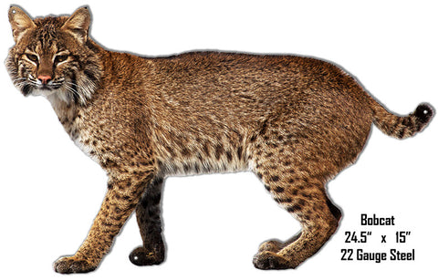 Bobcat Animal Wall Art Laser Cut Out Metal  Sign 15″x24.5″