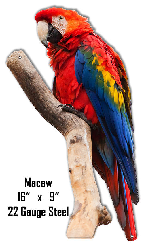 Macaw Animal Wall Art Laser Cut Out Metal  Sign 9″x16″