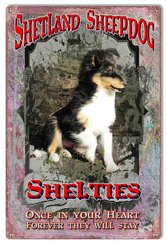 Shelties Once In Your Heart Reproduction Metal  Sign 12″x18″