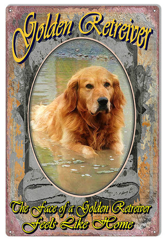 The Face Of A Golden Retriever Reproduction Animal Metal  Sign 12″x18″