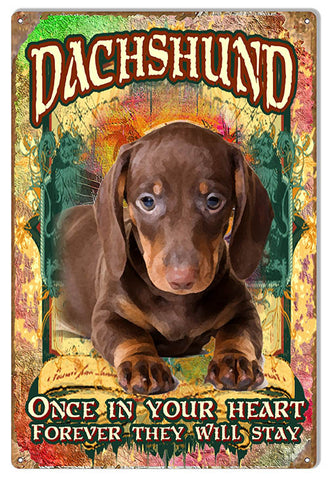 Forever In Your Heart Dachshund By Phil Hamilton 12x18