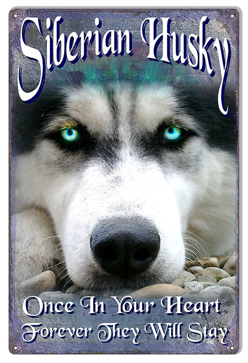 Siberian Husky By Artist Phil Hamilton Sign 12x18
