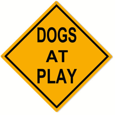 Dogs At Play Metal Sign 12x12