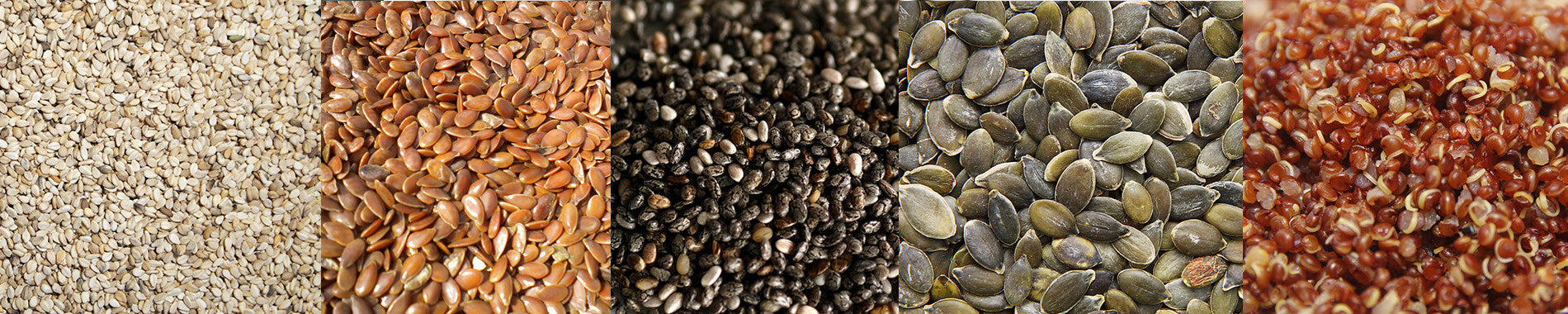 A Guide to Seeds (for humans, not birds)