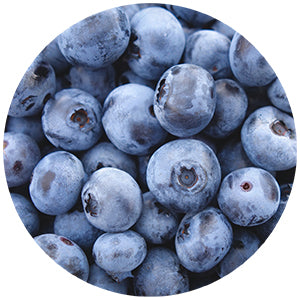 blueberries contain antioxidants
