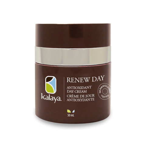 Kalaya Renew Antioxidant Day Cream - eVitality.ca