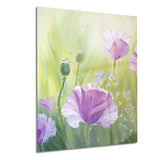 purple poppies in morning floral canvas art print PT6277