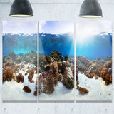 indonesia underwater panorama photography canvas art print PT6443
