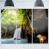 Tiger Watching Waterfall Landscape Photography Canvas Print