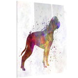 american bulldog animal canvas artwork print PT6578