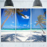 coconut palms at beach photo landscape canvas art print PT6796