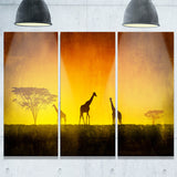 african sunset aura landscape canvas art print PT6831